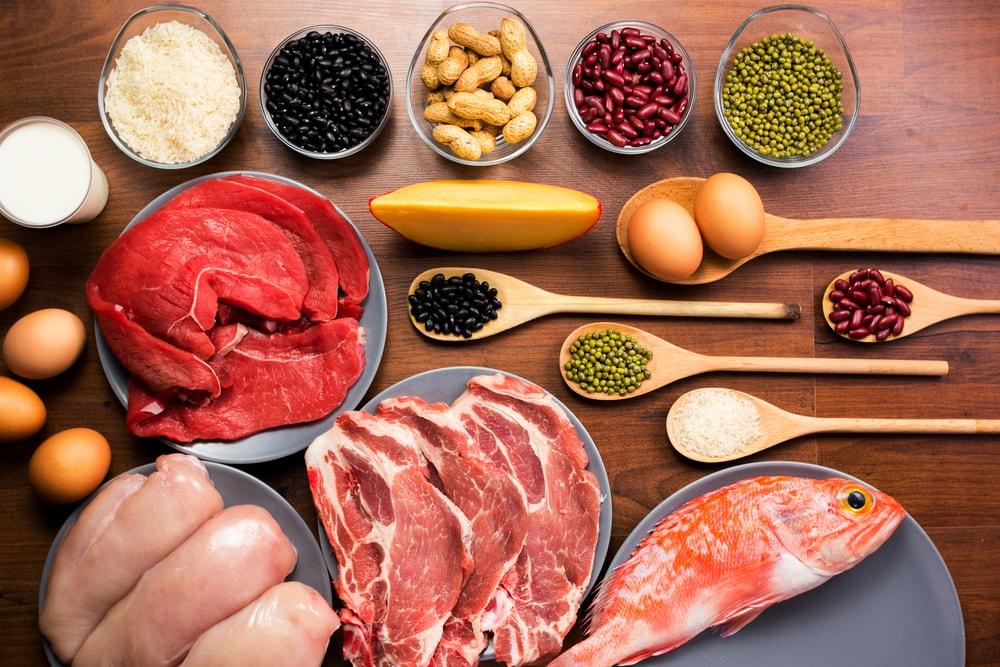aliments protéinés
